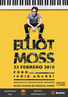 Large_elliotmossflyer