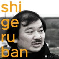 Large_shigeru-ban-boletia-perfil