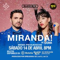 Large_instagram-miranda-tijuana