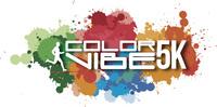Large_nuevo_logo_color_vibe___1_