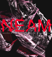 Large_neam2018