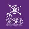 Large_consejo_visiones