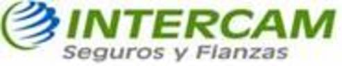 Large_intercam_seguros