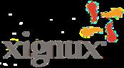 Large_22_xignux