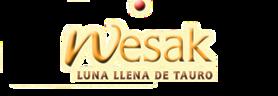 Large_copia_de_slider5-wesak-sanacion-pranica-logo