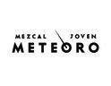 Large_logo_meteoro